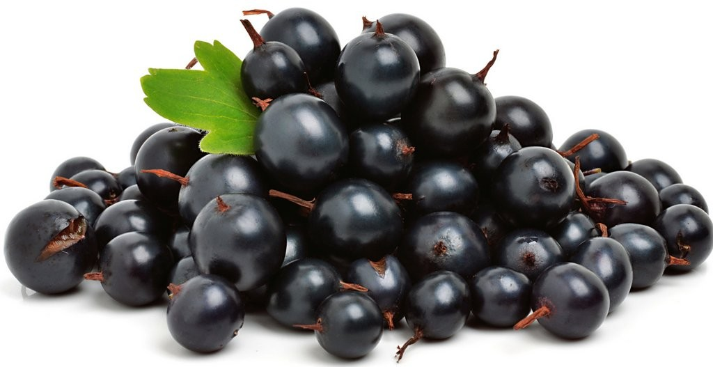 Fruit and Veg black currants shutterstock_110804681