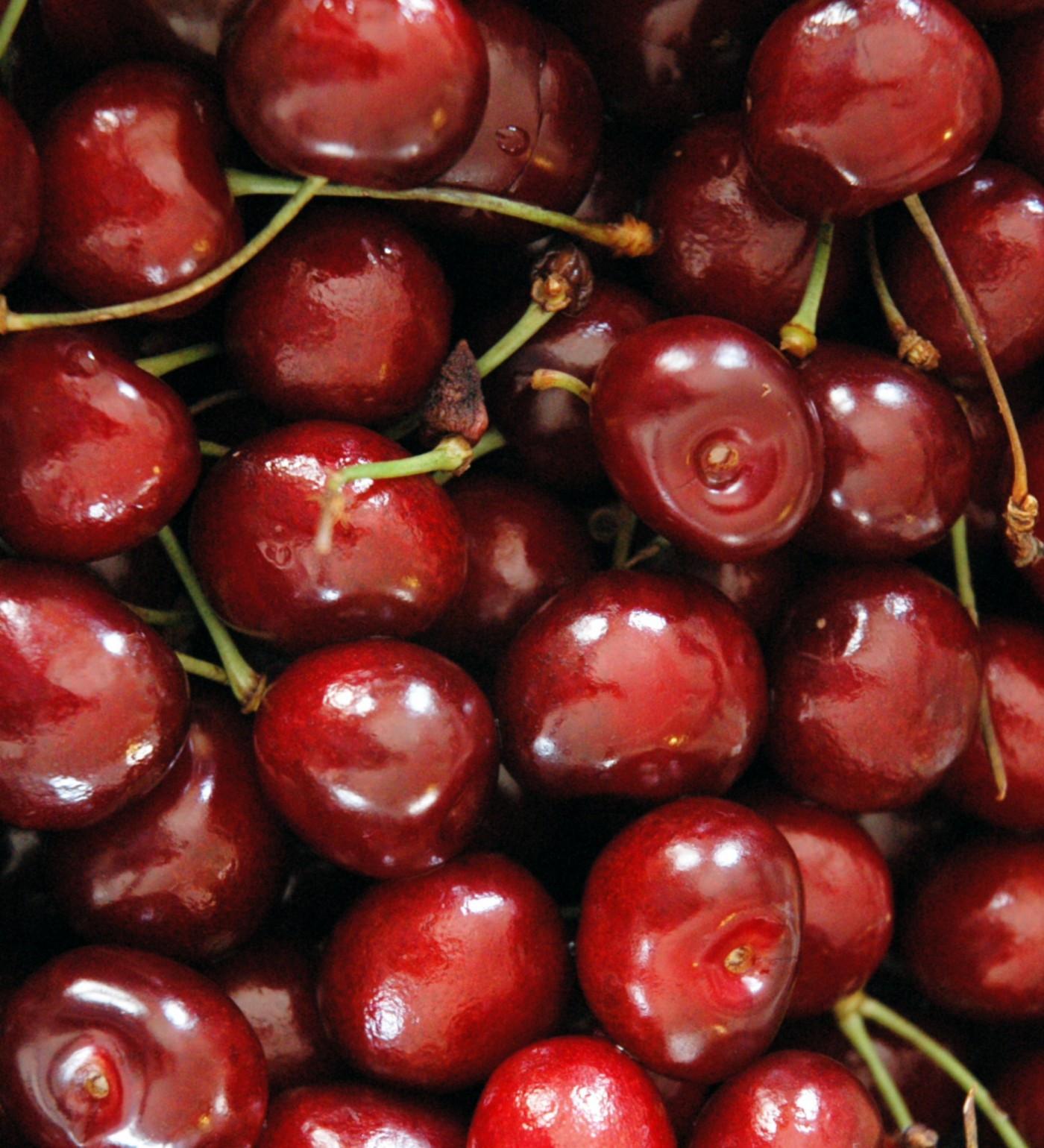 Fruit 2.5C Cherry &#039Lapins&#039