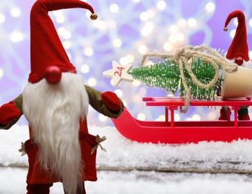 Christmas At Glendoick